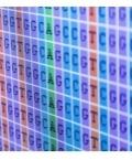 Harvard T.H. Chan Bioinformatics Core