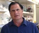 Dr. Stephen Spector, MD