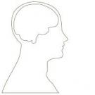 Desarrollo del Cerebro y Salud Mental